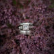 elite wedding planning - wedding rings