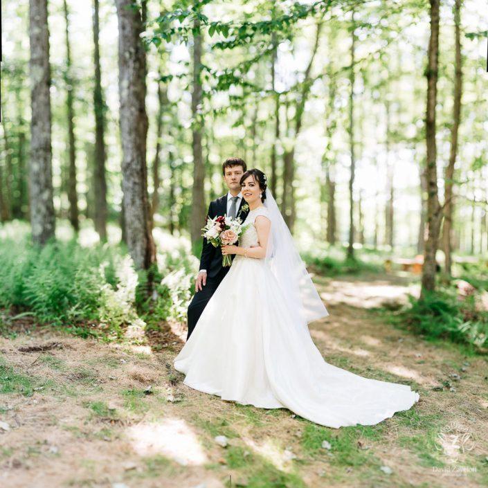 handsome hollow barn - forest wedding - hudson valley