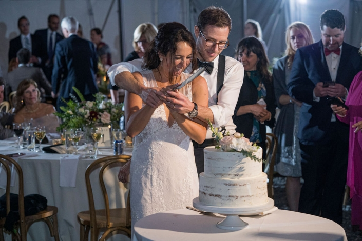 cake cutting - vineyard wedding